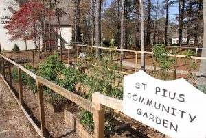 The community garden at St. Pius X Church in Conyers, Ga., which was started in March, is seen Nov. 20. The produce raised goes to families in need and the garden is an example of ways the Atlanta Archdiocese hopes Catholics and parishes can implement Pope Francis' encyclical on the environment. (CNS photo/Michael Alexander, Georgia Bulletin) See ATLANTA-LAUDATO-ACTION Dec. 2, 2015.